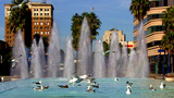 Seagulls Landing On Downtown Long Beach Fountain stock footage