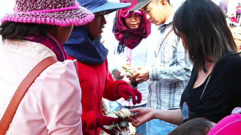Women sell crabs Footage