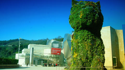 Guggenheim Museum And Puppy Sculpture,time Lapse,4 stock footage