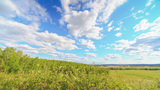 Landscape stock footage