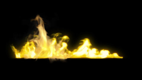 Fire Revealers 4 stock footage