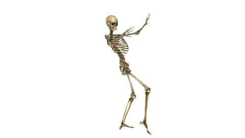 骸骨ダンス Animation