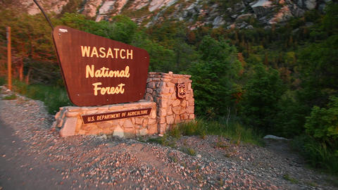 Wasatch National Forest Live Action