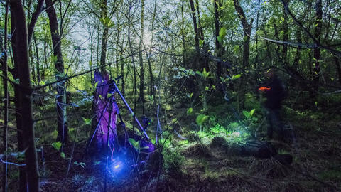 4k UHD making of a time lapse in forest 11332 Footage