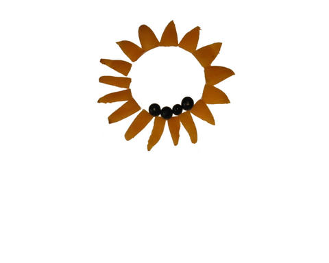 Sunflower animation isolated object Stock Video Footage
