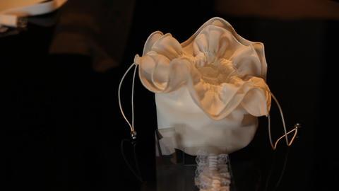 bridal bag Footage