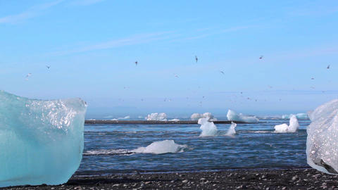 Blue Icebergs At The Shore In Iceland stock footage