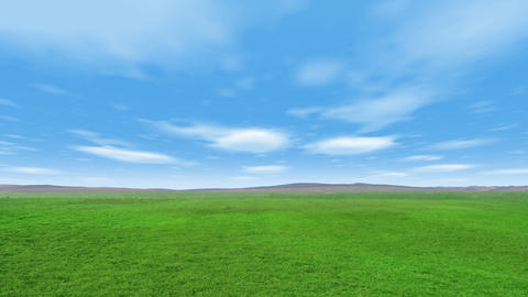 Cloudy Green Field Windy Animation