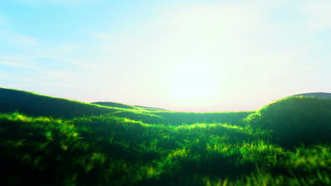 Summer Field 3 Animation