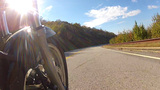 Low Angle POV Motorcycle Riding Forest Road 2 stock footage