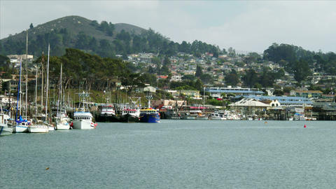 Boats in Morrow Bay Harbor Footage