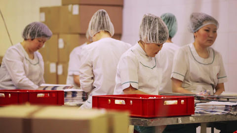 Packing of ice-cream at the dairy factory Animation