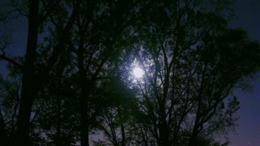 Timelapse moon rise Footage