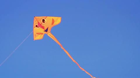 Face Kite Footage