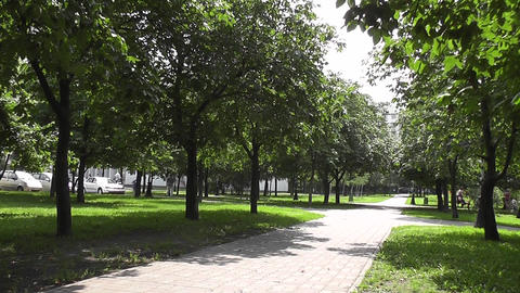 Summer Park stock footage