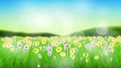 Spring Background 05 Animation