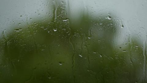 melancholy rain drops on window DOV Audio 11339 Footage