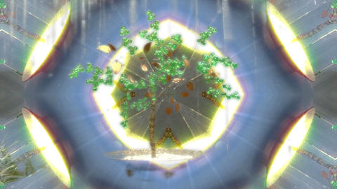 kalido tree Animation