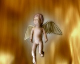 Angel stock footage