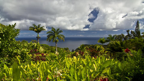 Garden Of Eden, Timelapse, Maui, Hawaii, USA stock footage