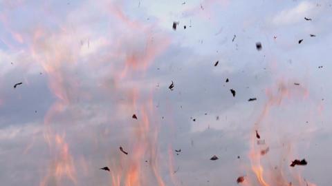Fluttering Ash Footage