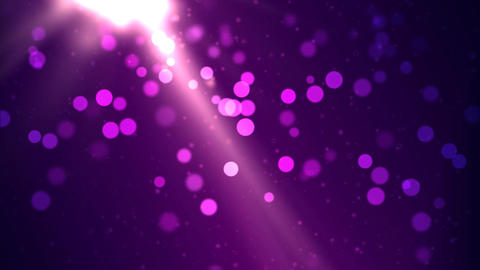 Particle Background - Loop Purple Animation
