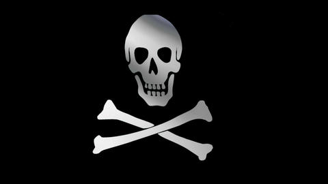 The Jolly Roger Flag stock footage