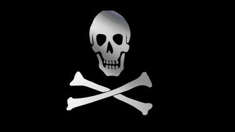 The Jolly Roger Flag CG動画