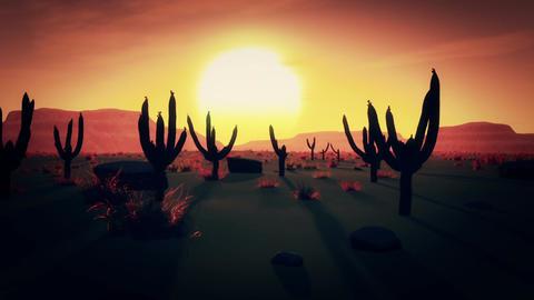 Desert Saguaro Cactus Field 2 Animation