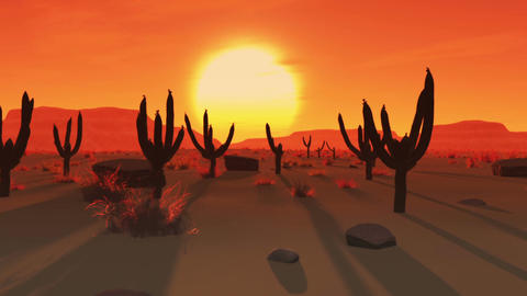 Desert Saguaro Cactus Field 3 Animation