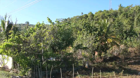 Dominican Landscapes stock footage