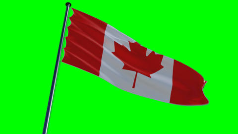 Canada Flag, HQ Animated On An Green Screen stock footage