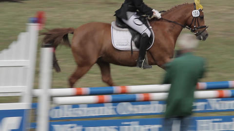 show jumping with horses Live Action