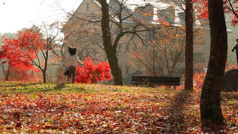 Girl runs through the autumn park Footage