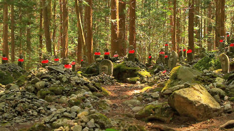 Statue of Jizo Bosatsu, Japan Footage