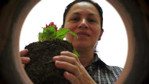 Female Gardener Inside Clay Pot Planting stock footage