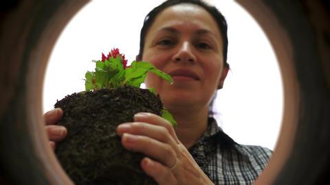 Female Gardener Inside Clay Pot Planting Live Action