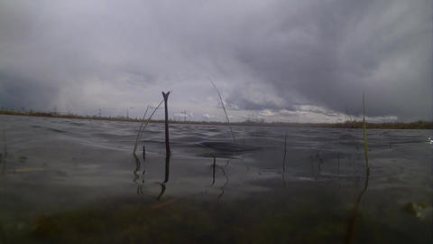 bad weather, storm begins on the lake Footage