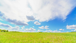 Landscape, Green Meadow, Motion Controlled Dolly stock footage