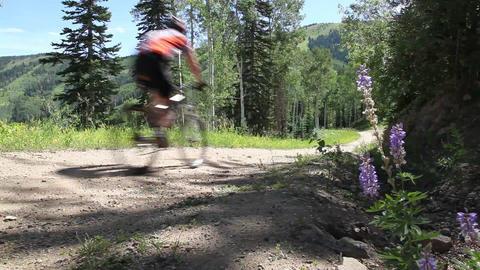 Mountain biking low shot Live Action
