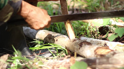 Shaving Wood With Machete stock footage