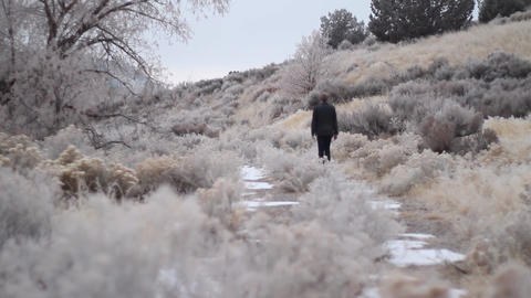 Walking Down Frozen Path stock footage