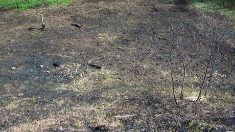 Burned grass, ash coals Footage