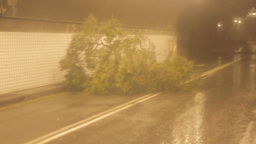 Tree Blowing Around In Tunnel stock footage