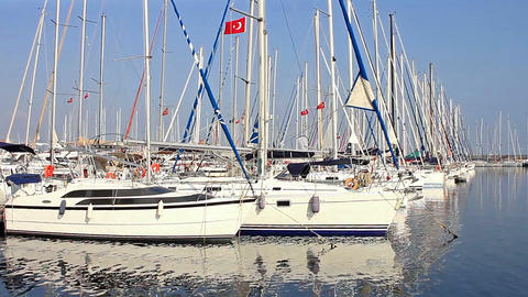 Luxury Yachts In The Harbor. Marina stock footage