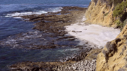Rugged ocean beach Footage