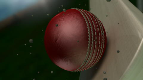 cricket ball hitting bat closeup animation Animation