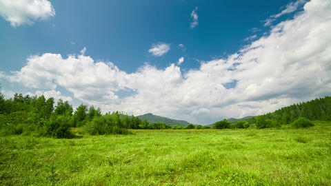 Summer Field Meadow Timelapse With Clouds stock footage