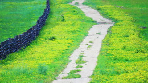 Countryside Field Road With Heat Haze, Hot Summer stock footage