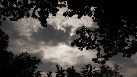 Gloomy Spooky Dark Sky With Trees 2 Footage